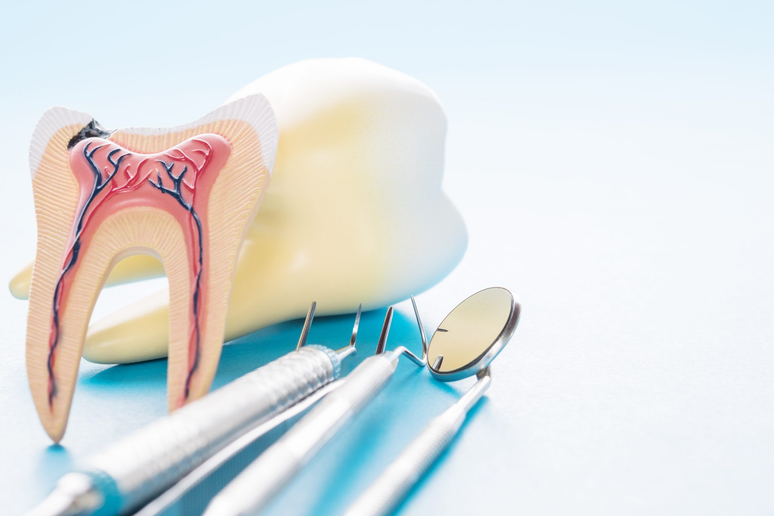 north hollywood root canal